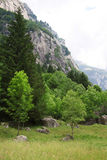 Val di Mello Stock Photography