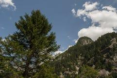 Val di Mello, Val Masino, la Valteline, Sondrio, Italie, l'Europe Image libre de droits