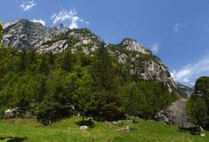 Val Di Mello, Val Masino, Valtellina, Sondrio, Ιταλία, Ευρώπη Στοκ Εικόνες