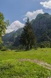 Val di Mello, Val Masino, Valtellina, Sondrio, Италия, Европа Стоковое Изображение