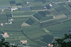 Val di Non (Trentino) Royalty Free Stock Photography