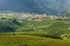 Val di Non (Trento) стоковая фотография rf