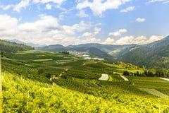 Val di Non (Trento) Fotografia Stock Libera da Diritti