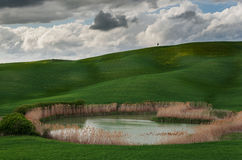 The Val d'Orcia Tuscany. Val dOrcia in southern Tuscany royalty free stock images
