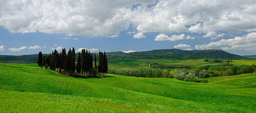 Val d'Orcia Stock Image
