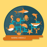val för bläckfisk för djurdelfin marin- Royaltyfri Foto