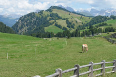 Val Gardena Photo stock