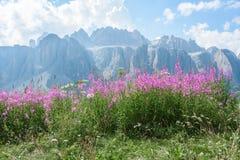 Val Gardena em Italia imagem de stock