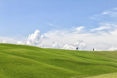 Val Orcia. Green hill in Val orcia tuscany Royalty Free Stock Photo