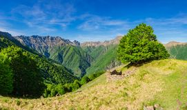 Val Pogallo come visto da Alpe Leciurt, nella parità del cittadino di Valgrande Fotografie Stock Libere da Diritti