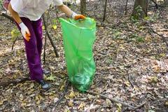 Val upp av avfall i skogen fotografering för bildbyråer