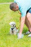 Val upp av hundaktern Fotografering för Bildbyråer