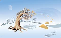 Val van de bladeren Stock Afbeelding