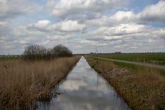 Vala em um prado em Schalkwijk Imagem de Stock Royalty Free