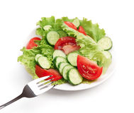 Valad vegetal sano Imagen de archivo