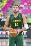 Valanciunas de Lituânia Fotos de Stock