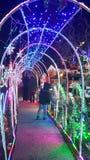 Valanga delle luci di Natale fotografia stock
