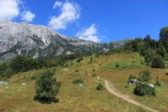 Valbona nationalpark i Albanien Royaltyfri Fotografi