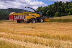 VALCHOV, CZECH REPUBLIC - JUNE 29: Combines harvesting grains and filling tractor trailer in summer on field June 29, 2017 in Valc. Combines harvesting grains Stock Photography