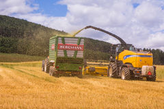 VALCHOV, CZECH REPUBLIC - JUNE 29: Combines harvesting grains and filling tractor trailer in summer on field June 29, 2017 in Valc. Combines harvesting grains Royalty Free Stock Images