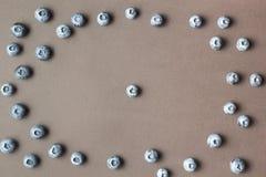 Valde nytt blåbär på en brun bakgrund royaltyfri fotografi