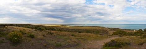 Valdes Peninsula, Northern Patagonia, Argentina, South America Stock Photos