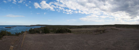 Valdes Peninsula, Northern Patagonia, Argentina, South America Royalty Free Stock Photo