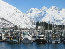Valdez Harbor. Boats in harbor at Valdez, Alaska Royalty Free Stock Photos