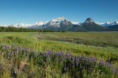 Valdez Landscape Royalty Free Stock Images