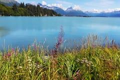 Valdez Royalty Free Stock Image
