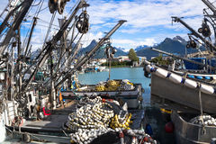 Valdez Small Boat Harbor. Fishing Vessels with gear Stock Photo