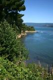 Valdivia flod, Niebla, Chile Fotografering för Bildbyråer