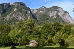 Ecoregion of the Valdivian temperate rainforests in southern Chile Chilean Patagonia. The Valdivian temperate forest is an ecoregion on the west coast of Stock Image