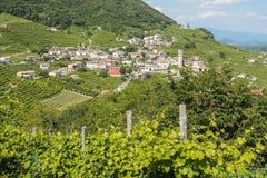 Valdobbiadene wzgórza i Prosecco winnicy w Veneto obraz stock