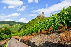 Vale Alemanha de Moselle: A vista aos vinhedos e as ruínas de Landshut fortificam perto de Bernkastel-Kues fotos de stock royalty free