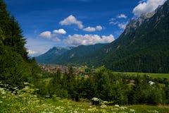 Vale alpino Foto de Stock Royalty Free