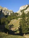 Vale alpino Imagens de Stock