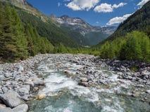 Vale alpino de Val Sissone com rio, árvores de larício e montanhas imagens de stock