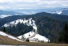 Vale bonito da floresta das montanhas Foto de Stock Royalty Free