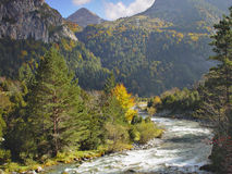 Vale Bujaruelo, perto do parque nacional de Ordesa Fotografia de Stock Royalty Free