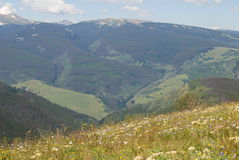 Vale da montanha do verão de Colorado Imagens de Stock Royalty Free