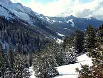 Vale da montanha no dia ensolarado imagens de stock royalty free