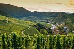 Vale de Ahr, Alemanha Foto de Stock