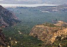 Vale de Amphissa em Greece Fotografia de Stock Royalty Free
