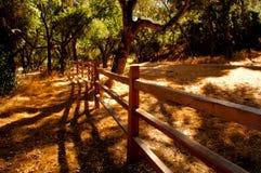 Vale de Carmel Imagens de Stock