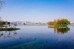 Vale de Cherry Blossom, wuxi, porcelana Imagens de Stock Royalty Free