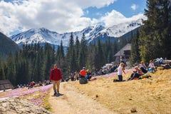 Vale de Chocholowska da visita dos turistas de Unidefined Fotos de Stock Royalty Free