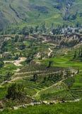 Vale de Colca no Peru Imagens de Stock