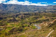 Vale de Colca, Peru Fotografia de Stock Royalty Free