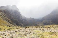 Vale de Collanes no vulcão do altar do EL imagens de stock